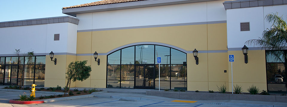 Mira Mesa Lead Glass Door